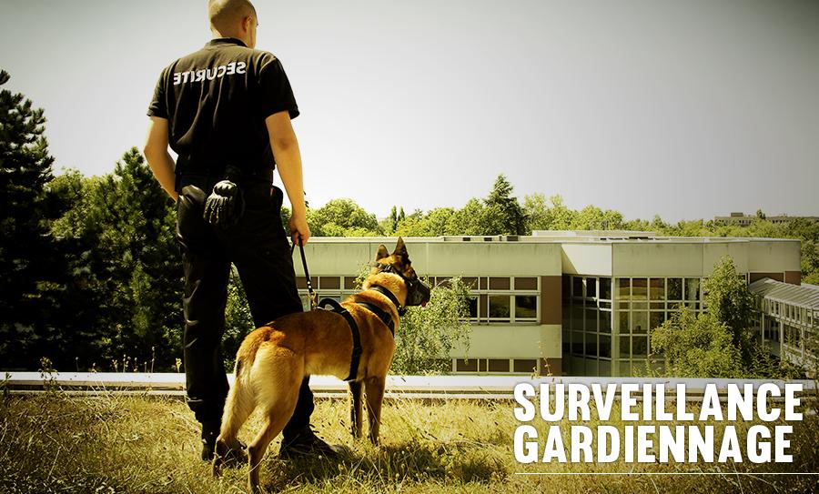 NEWFACE gardiennage et surveillance